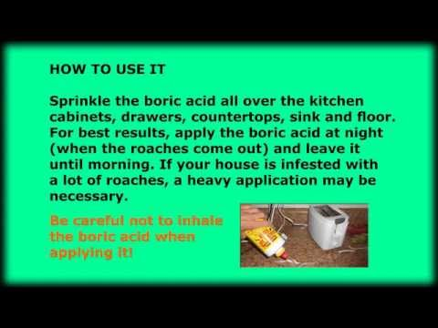 How to kill roaches with boric acid.