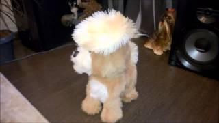 Интерактивный Озорной щенок FurReal Friends Hasbro (Хасбро)