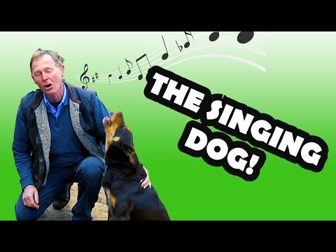 Farmer Sings With His Best Mate - (Singing Dog)