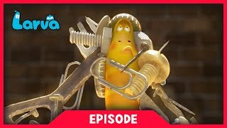 larva - magnet man  cartoon movie  cartoons for children  larva cartoon  larva official