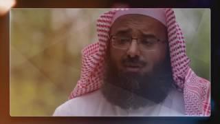 في حجر الحبيب / الشيخ علي باقيس