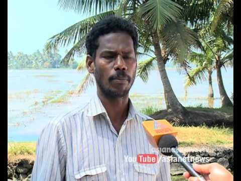 Pokkali farming fields filled Salt Water creates a Mess for other crops | Kannadi 31 Jan 2016