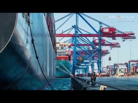 The top container terminal on the Suez Canal: The SCCT