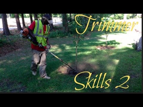 How To Edge Around A Tree / String Trimming Skills / String Trimming Demonstration