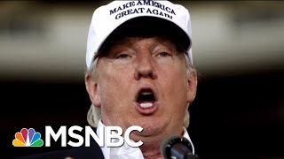 NYT Deputy General Counsel: Fake News Is An Evil Genius | Deadline | MSNBC