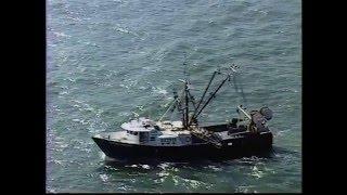 Rescue 911 - Squid Ship Son Save
