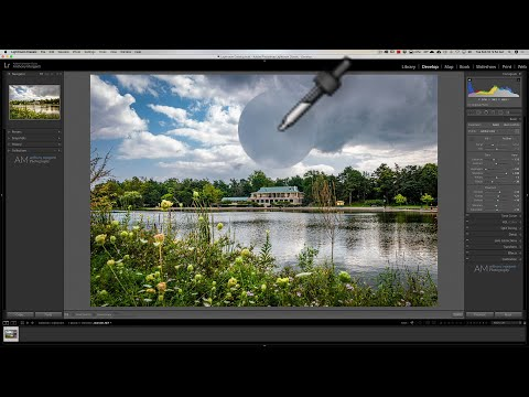 tips!-on-white-balance-selector-tool-in-lightroom