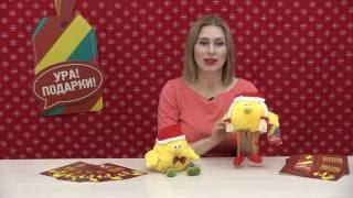 Цыплята Даша и Гришам - сладкие новогодние подарки для детей(Чудесные цыплята в красных новогодних колпачках! Сладкие подарки из нашей коллекции подарков для детских..., 2016-10-13T21:14:48.000Z)