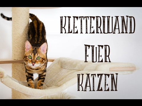 diy kletterwand f r katzen catwalk for cats youtube. Black Bedroom Furniture Sets. Home Design Ideas