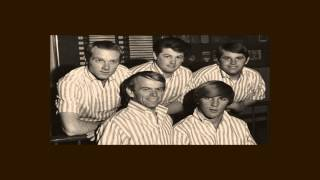 The Beach Boys ~ Please Let Me Wonder (Stereo)