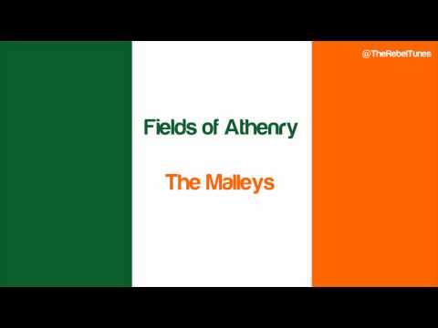 Fields Of Athenry - The Malleys