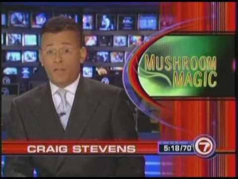 Gano Excel Fox News Video Ganoderma Lucidum Coffee USA