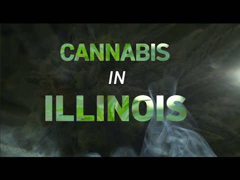 Jamal Smallz - BREAKING UPDATE CANNABIS LAWS IN ILLINOIS