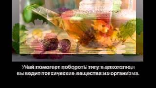 Монастырский чай против алкоголизма купить