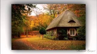 Уединенные лесные дома