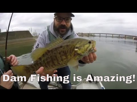 Fishing Below Dams And Tailwaters For Giant Fish!