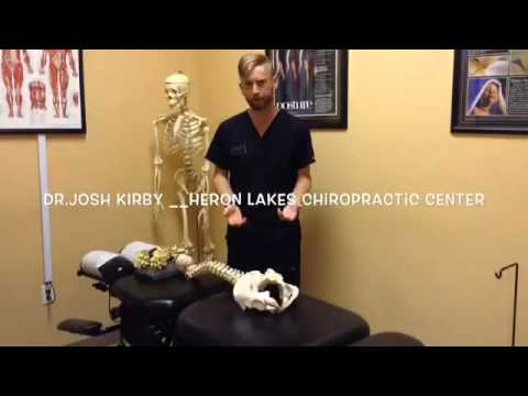 Understanding Subluxation - Heron Lakes Spine & Wellness Center of Coral Springs