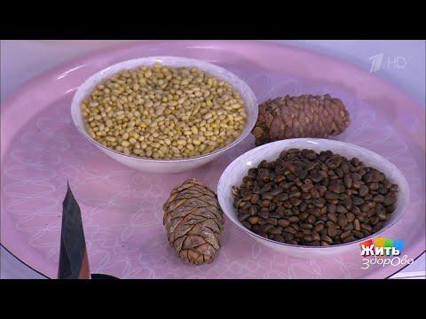 Вкусы России: кедровые орехи. Жить здорово! 11.02.2020