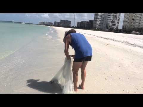Castnetting at The Eagles Nest, Marco Island