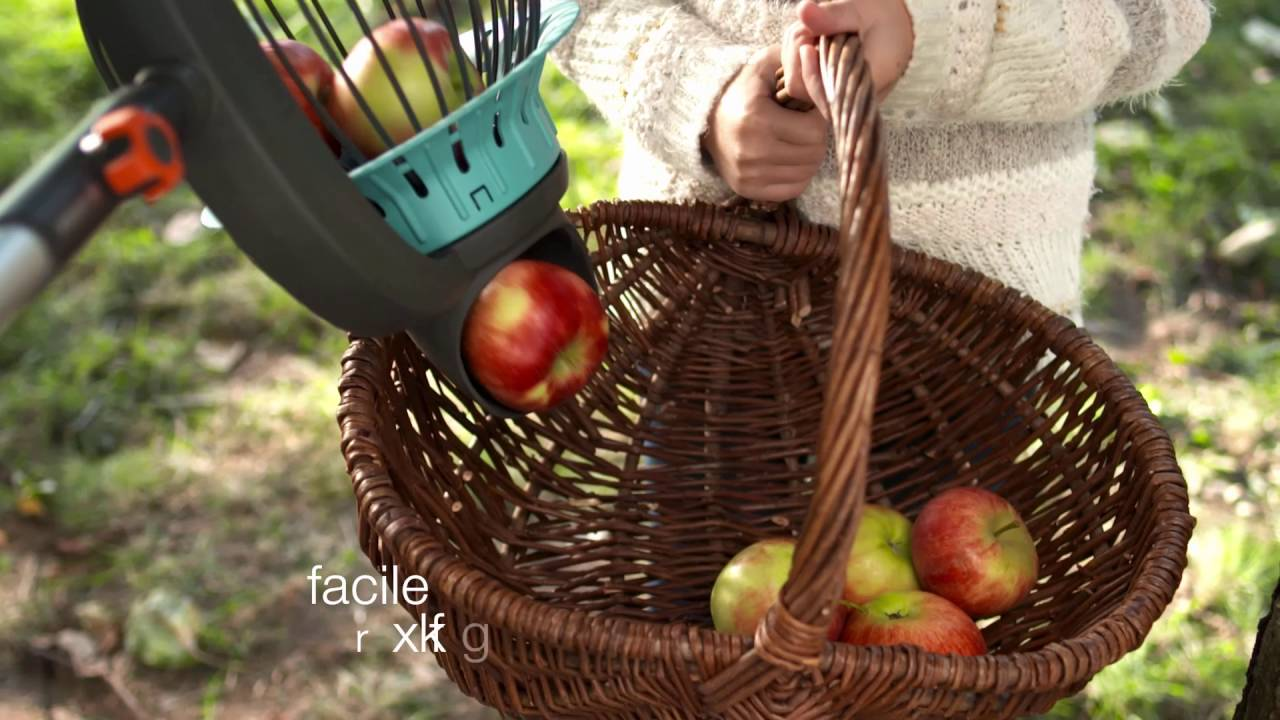 Ramasse fruits gardena ramassez vos fruits sans avoir - Ramasse fruits gardena ...