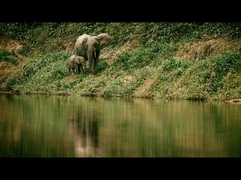 Journey To The Center | a SURFER expedition to Gabon