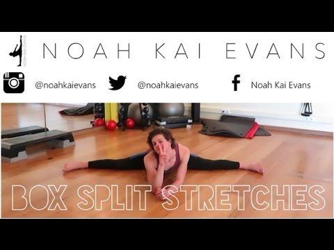 box/middle split stretches  noah evanswicks