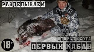 Классная охота на кабана ► Советы начинающим охотникам. 18+ Много крови! Разделываем кабана