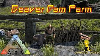 Beaver dams locations tips for looting ark survival evolved ark beaver dam farm malvernweather Choice Image