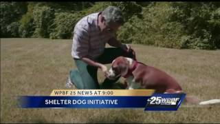 Andy Cohen promotes dog shelter initiative