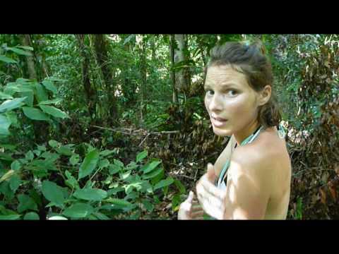 Langkawi - Trek sur l'île de tous les dangers