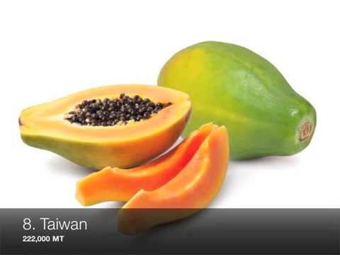 Top 10 Papaya Producing Countries