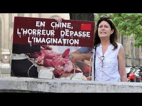 Stop à Yulin - stop au massacre !