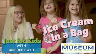 Just for Kids STEM Activities: Ice Cream in a Bag