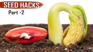 GARDEN TIPS(Hacks): TOP 25 Seeds & Seedlings Gardening Hacks DIY Ideas tricks Compilation - Part 2