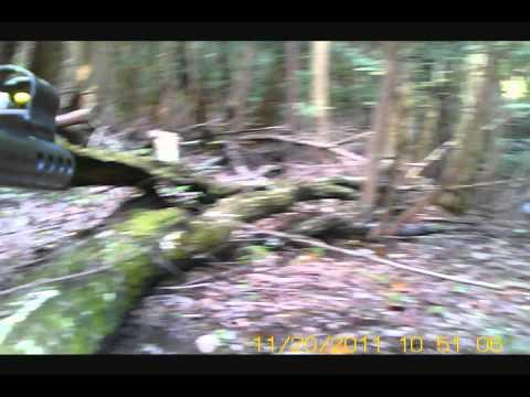 23初陣:wild boar hunting japan