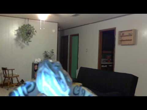 Tortuga Surveying the Web Cam