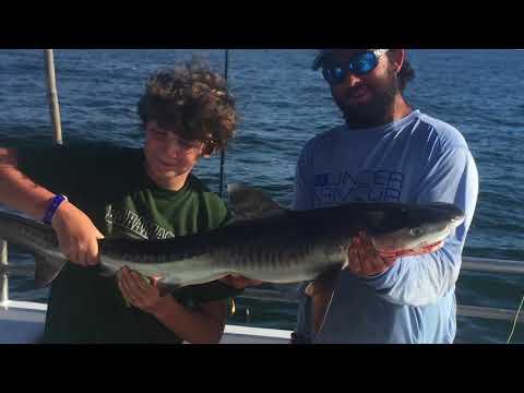 Junior Angler Catches Tiger Shark On $45 Drift Boat