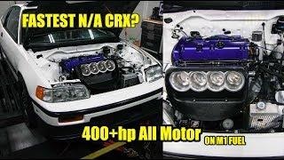 KILLER 400HP+ All Motor CRX - IPG Parts