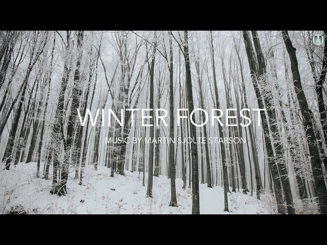 Ambient film music 'Winter Forest' Cinematic Fantasy Music for Cello and Guitar