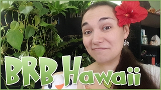 BRB Hawaii!! (Oh And Taiwan) • Pixel Biology Updates
