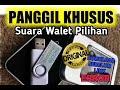 Suara Walet Gratis Berkelas Sarjana Walet Pray For Naggala   Mp3 - Mp4 Download