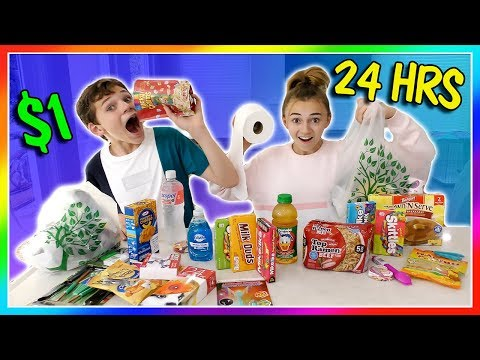 Living on ONLY Dollar Store Items for 24 Hours! | We Are The Davises
