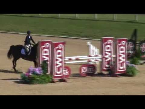 Video of IDREAM ridden by ANDREA VOGEL from ShowNet!