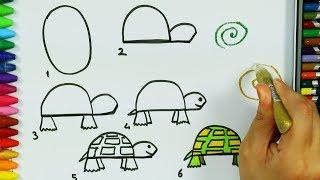Colorazione tartaruga 🍃 | Come disegnare | Pagine di colorazione | Imparare i colori per i bambini