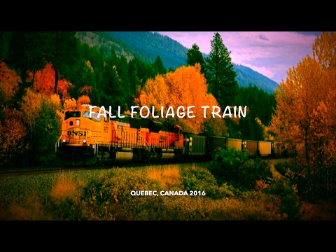 The Autumn foliage in Canada, a train trip in Quebec!