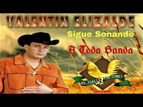 Corrido El Gallo De Oro Valentín Elizalde Letras Com