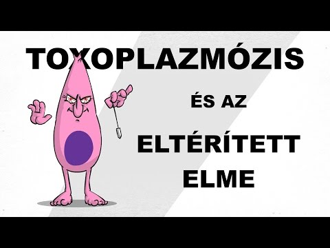 A toxoplazmózis és az eltérített elme - csak egyszerűen