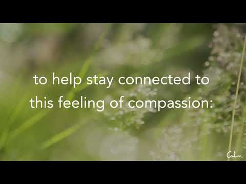 Meditation | The Strength of Compassion with Oren Jay Sofer