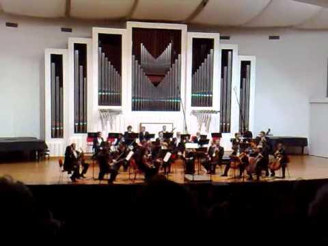 Concerto di Musica Classica Auditorium Pollini: ingresso musicisti