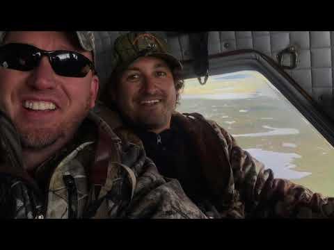 Newfoundland Moose Hunt 2019
